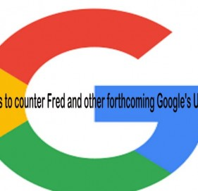 5 Tips to counter Fred and other forthcoming Google's Update