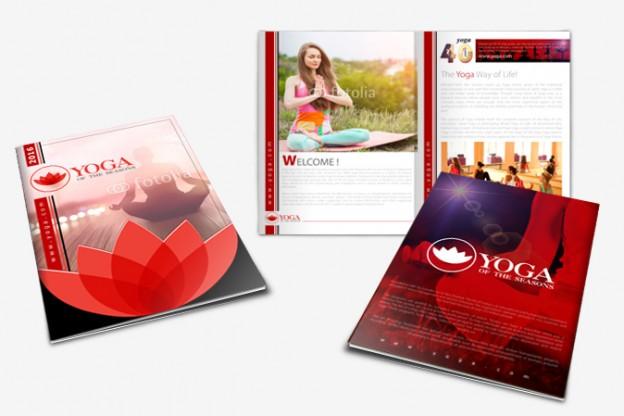 Media Kit Design Portfolio 1 - DreamLogoDesign
