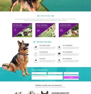 Webdesign19