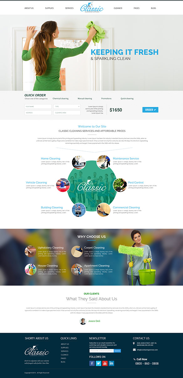 Web Design Portfolio 9 - DreamLogoDesign